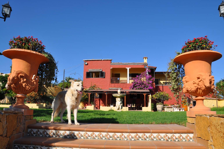 casas_rurales_perros_verano1.jpg